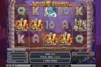 Free wild turkey slots