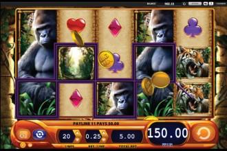 Amazon Queen - jungle and win big at Casumo casino!
